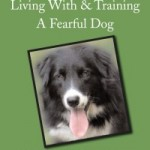 A Guide to Living with and Training a Fearful Dog